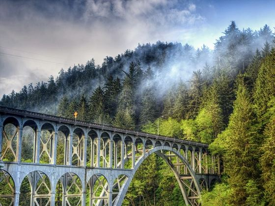 Cape Creek Bridge near the Oregon coast