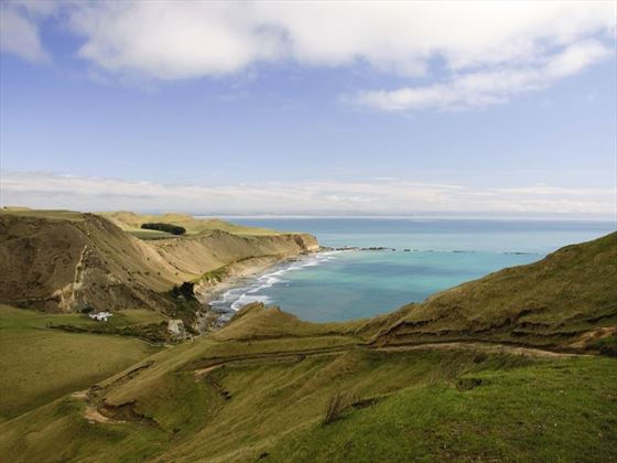Cape Kidnappers near Napier