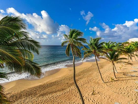 Curtain Bluff beach