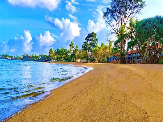 Beach views from Cinnamon Bey Beruwala