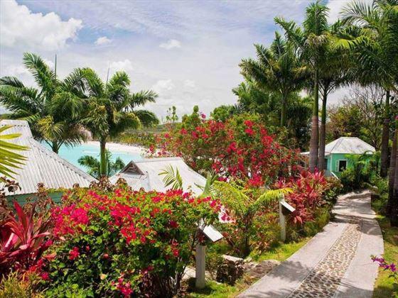 Cocos Hotel gardens