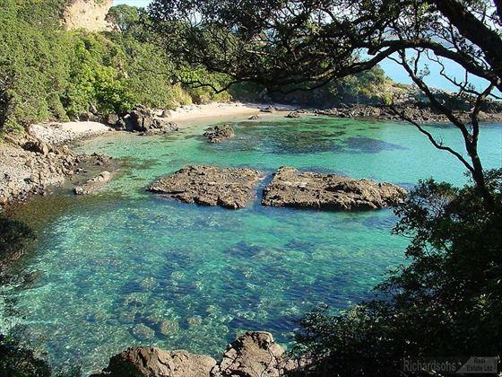 Coromandel Matarangi