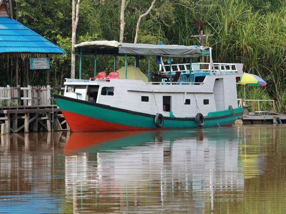Kalimantan River Cruise