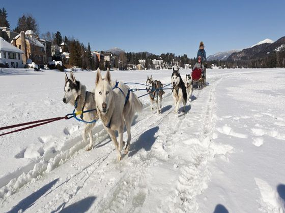 Dog sledding on Mirror Lake, Lake Placid, New York State