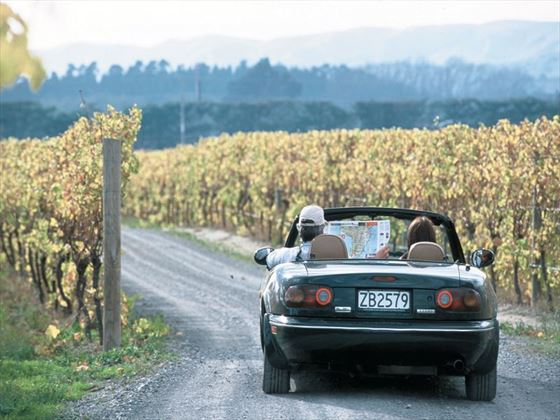 Driving through the wine regions