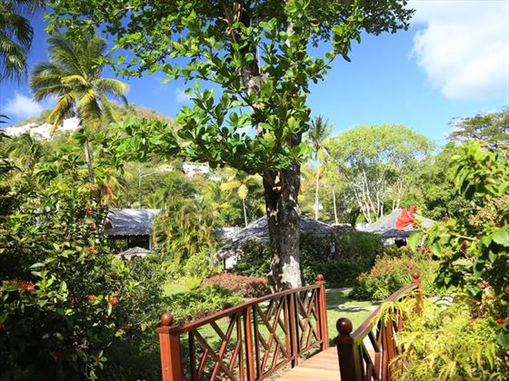 The lush gardens at East Winds