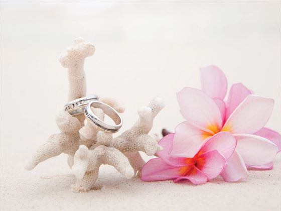 Enchanted Island Resort weddings