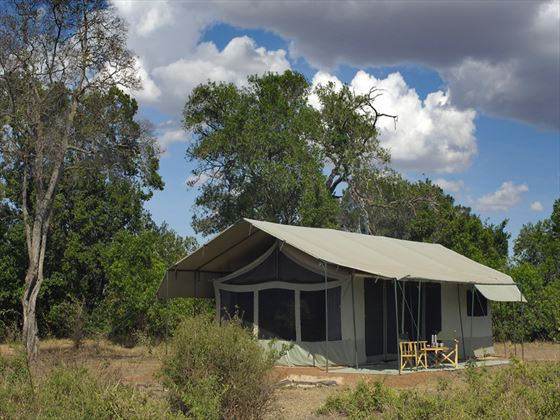 Exterior view of the guest tents at Porini Lion Camp