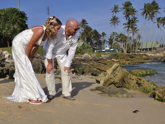 Bride & Groom releasing turtles at The Fortress