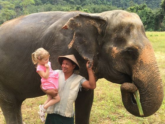 Getting close with Thailand's giants at Elephant Hills