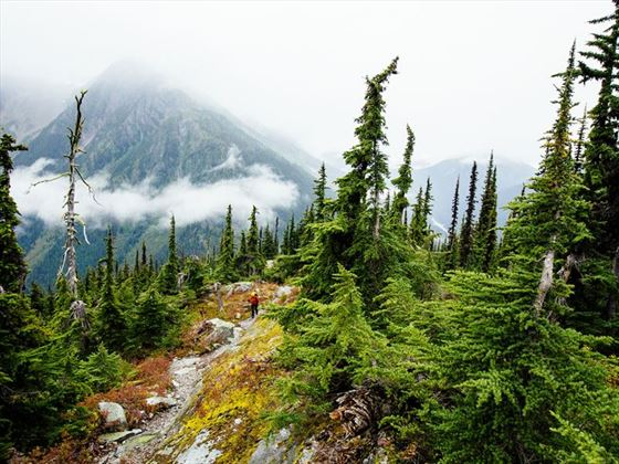 Hiking Glacier National Park in the Kootenays