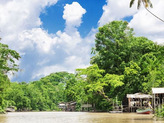 Houses on the river's edge in the Amazon