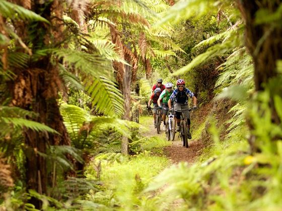 Kawakawa Bay track, Rotorua