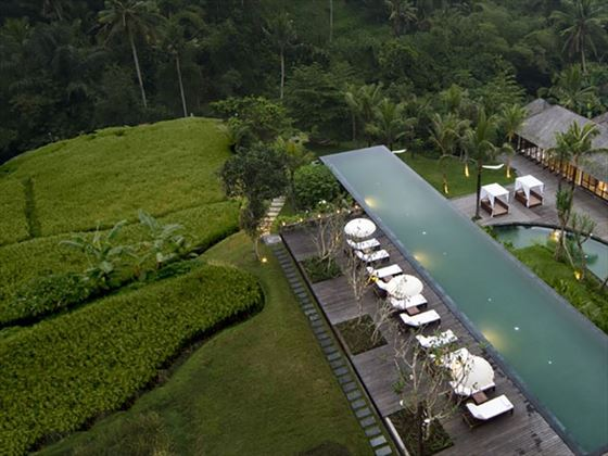 Infinity Pool, Komaneka at Bisma, Ubud