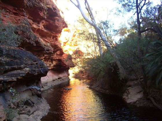 Kings Canyon river