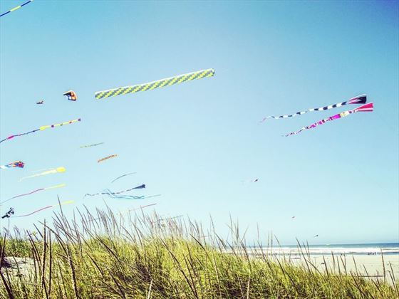 Kites flying over Long Beach, Washington State