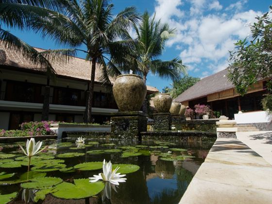 Lotus pond at Spa Village Resort Tembok, Bali
