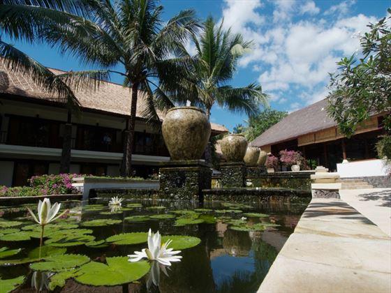 Lotus pond at Spa Village Resort Tembok, Bali