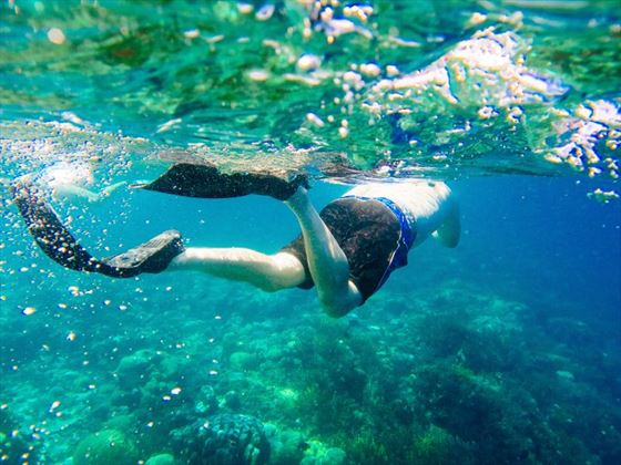 Go snorkelling in Bali's tropical waters