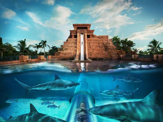 Atlantis Paradise Island Bahamas Book Now With Tropical Sky