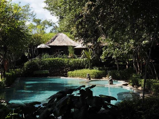Monsoon Lodge Pool, The Menjangan Resort Bali