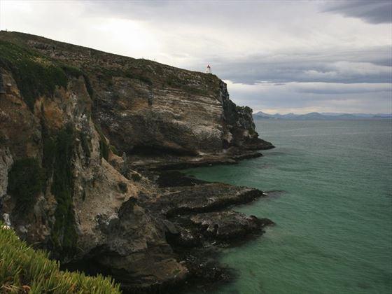 Otago Peninsula scenery by Dunedin
