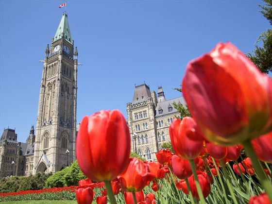Ottawa Peace Tower and Parliament, Ottwaw