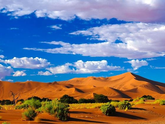 Phenomenal Sand Dune Landscapes in Namibia
