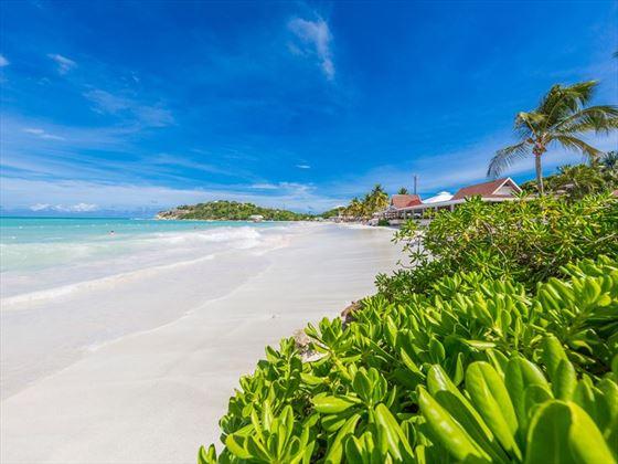 The beach at Pineapple Beach Club