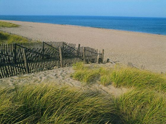 Race Point Beach, Cape Cod