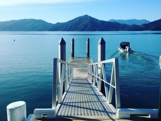 Jetty and Marlborough Sounds view