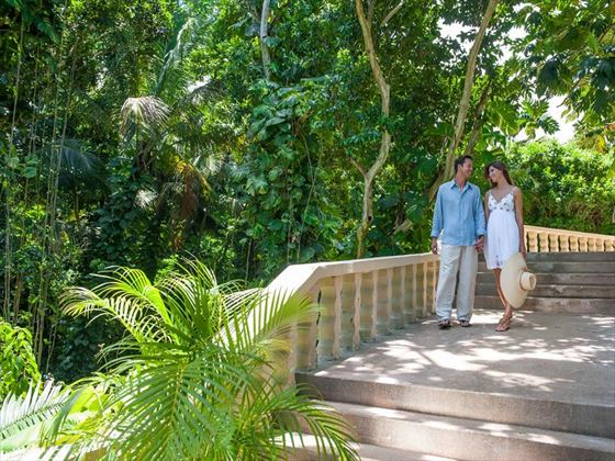 A romantic walk through the lush tropical gardens
