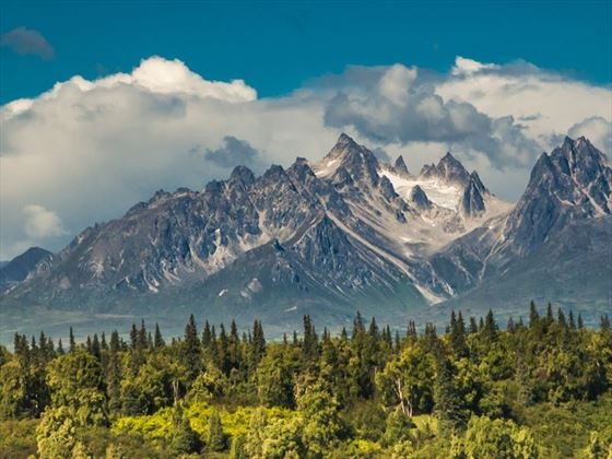 Rugged mountain peaks Denali National Park, Alaska