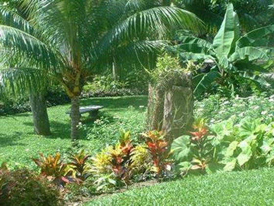 The beautiful tropical gardens of the villa