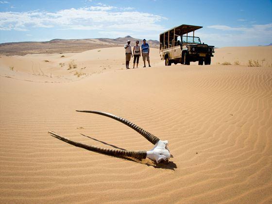 Serra Cafema Camp desert