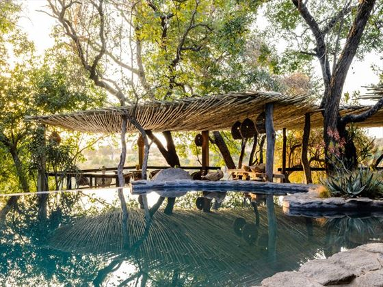 Swimming pool at Singita Boulders