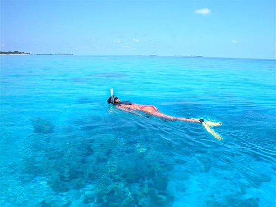 Snorkelling activities at Kuredu Island Resort