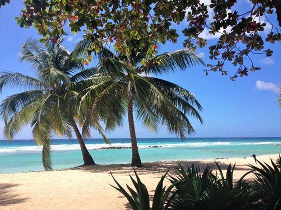 The beach at Sugar Bay Barbados
