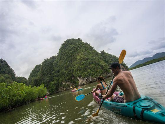 Krabi, Kayak trip through the mangroves