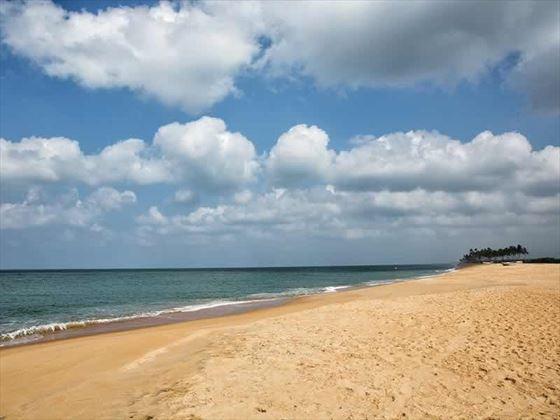 The beach at Anantaya Resort & Spa, Chilaw