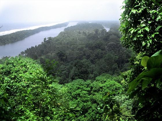 Aerial view of Tortuguero