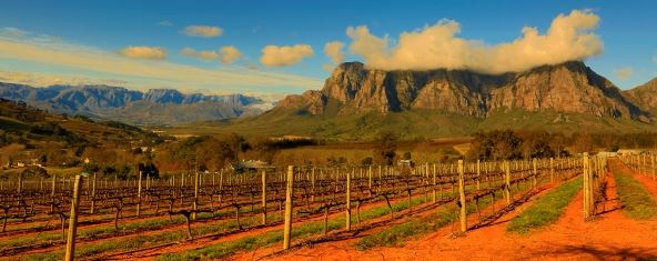 Stellenbosch - Getty