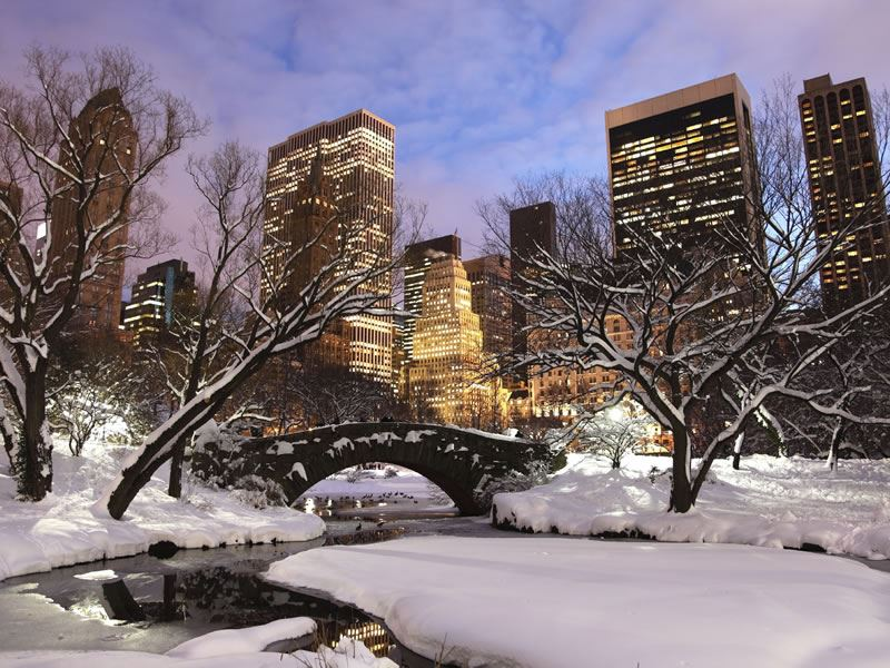 Central Park at Christmas