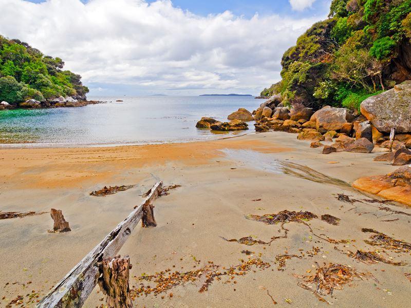 harrold bay stewart island