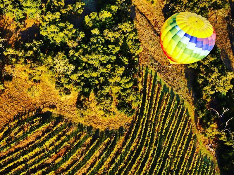 hot air balloon over californias napa valley
