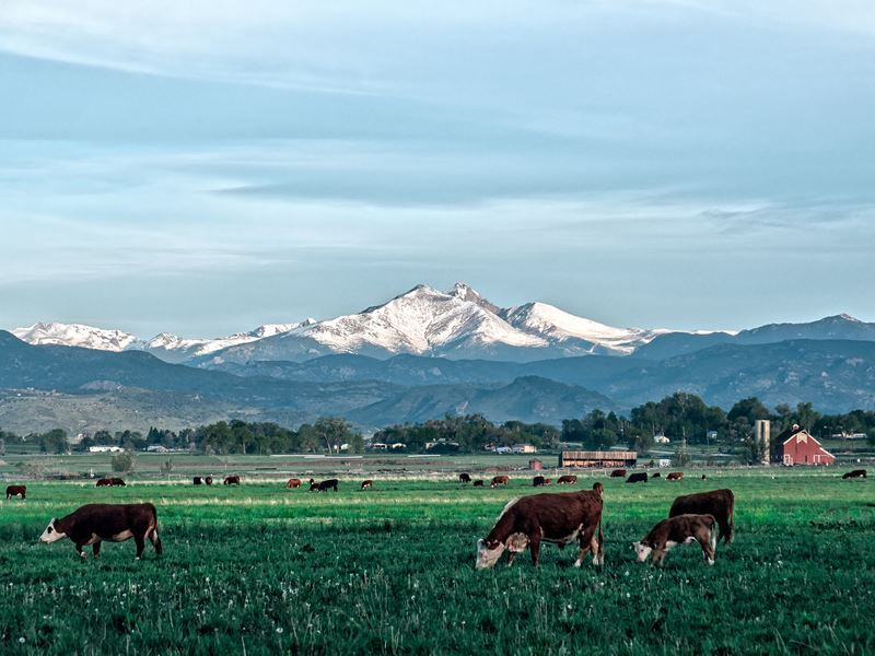 longmont landscape views colorado