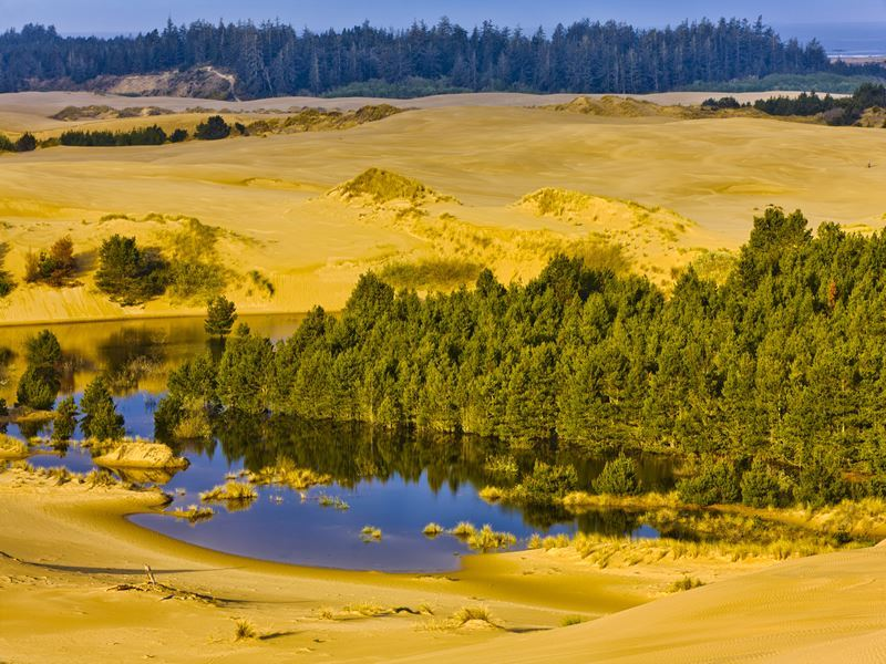 oregon dunes nationa recreation area