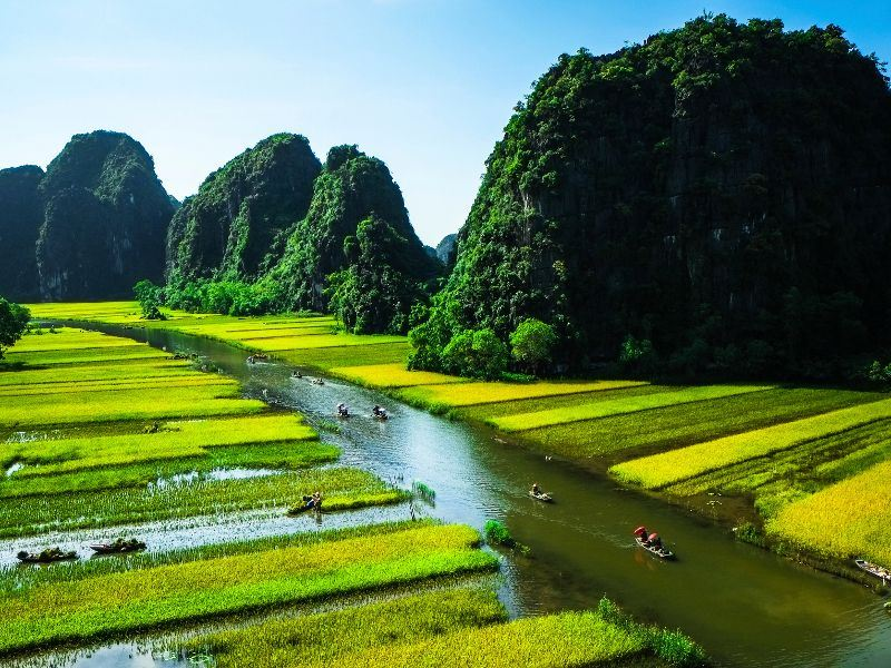 rice field and river in ninh binh vietnam