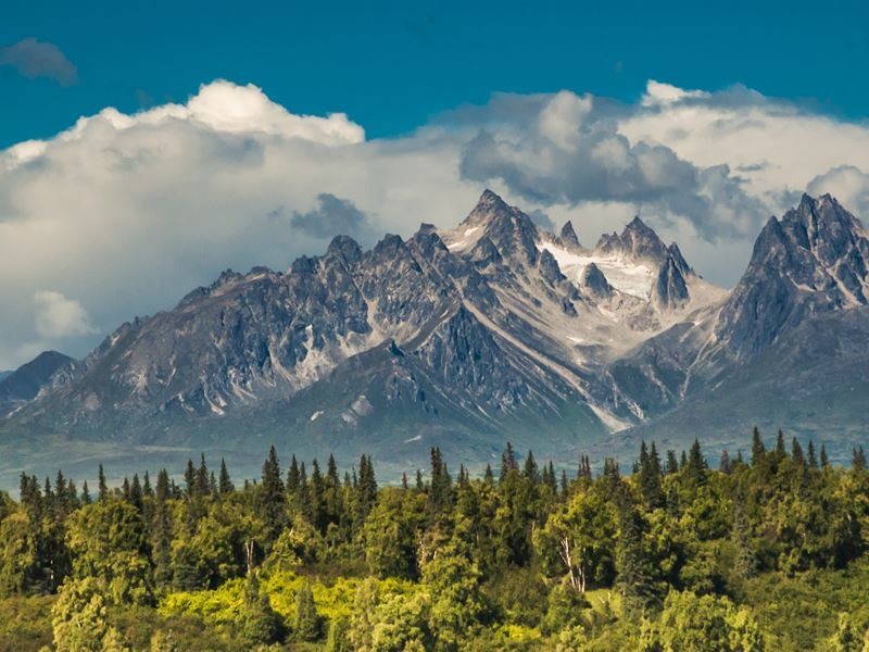 rugged mountain peaks denali national park
