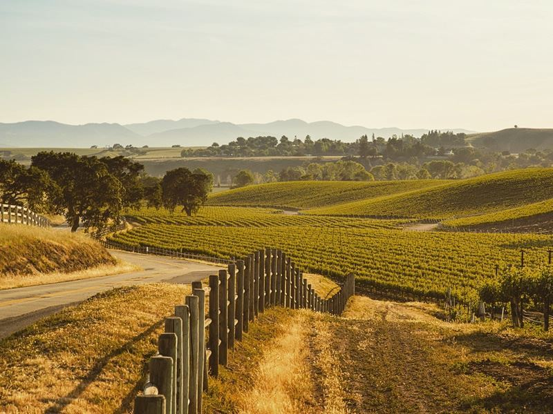 santa ynez wine country california